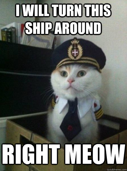 i will turn this ship around right meow - i will turn this ship around right meow  Captain kitteh