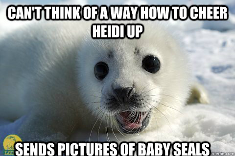 CAN'T THINK OF A WAY HOW TO CHEER HEIDI UP Sends pictures of baby seals  Cute Seal
