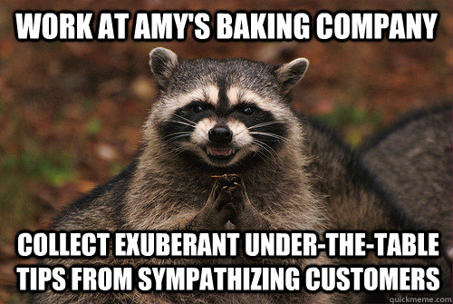 work at Amy's baking company collect exuberant under-the-table tips from sympathizing customers  - work at Amy's baking company collect exuberant under-the-table tips from sympathizing customers   Insidious Racoon 2