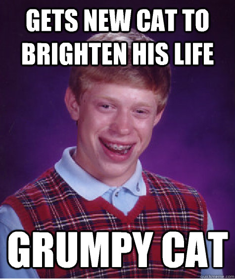 Gets new cat to brighten his life Grumpy cat - Gets new cat to brighten his life Grumpy cat  Bad Luck Brian