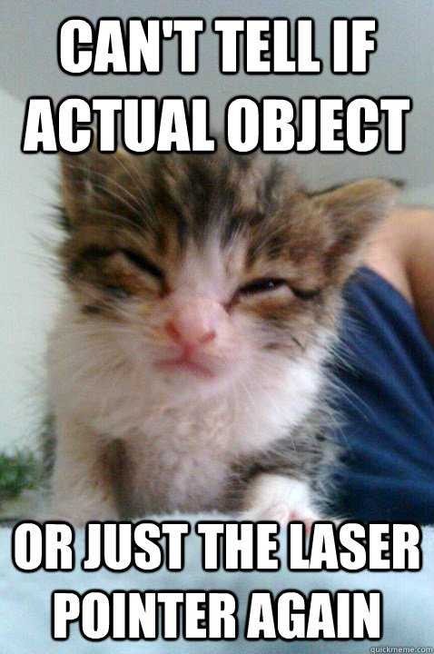 Can't tell if actual object or just the laser pointer again