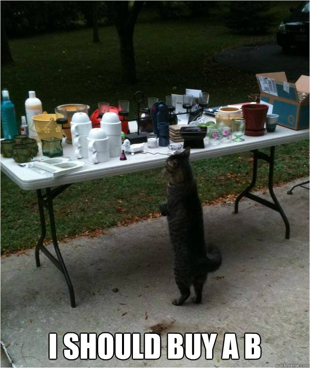 Funny Yard Sale Meme : I should buy a b yard sale cat quickmeme