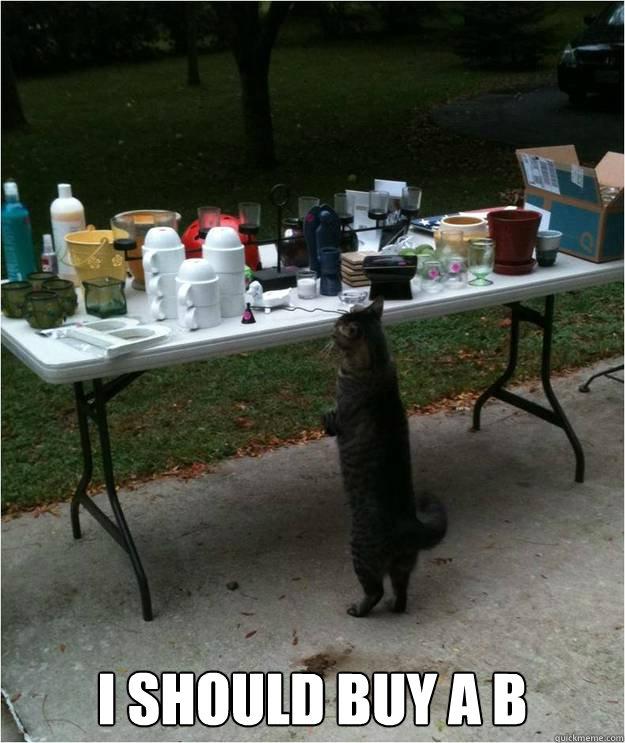cb6ee6404e9466212f5075e29eefe5cbdc2da9f277c59e9037ceacb03163b2ab i should buy a b yard sale cat quickmeme
