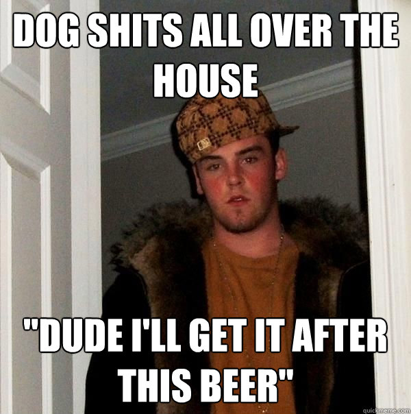 Dog shits all over the house