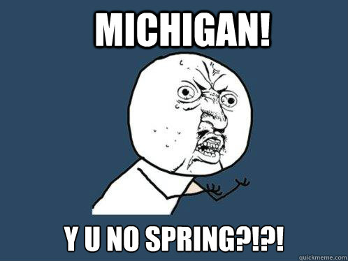 MICHIGAN!  Y U NO SPRING?!?! - MICHIGAN!  Y U NO SPRING?!?!  Y U No