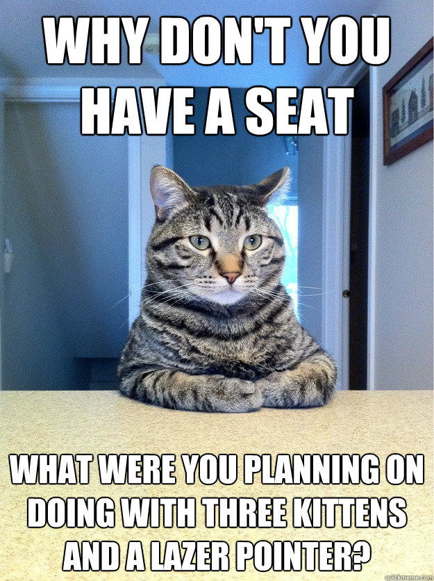 Why don't you have a seat What were you planning on doing with three kittens and a lazer pointer?  Chris Hansen Cat