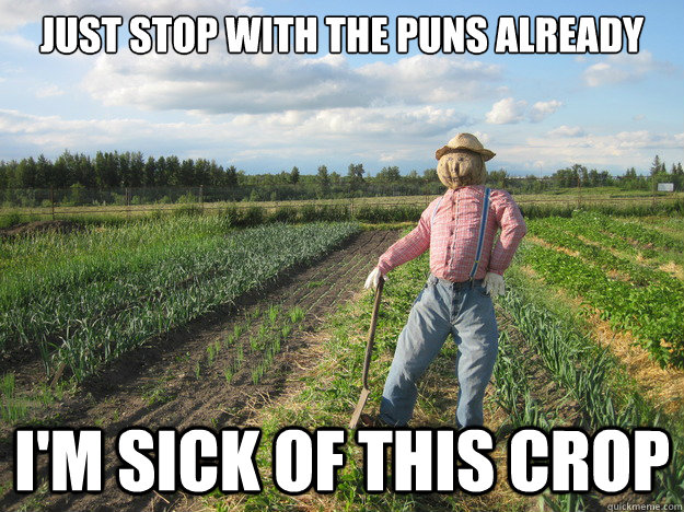 just stop with the puns already I'm sick of this crop - just stop with the puns already I'm sick of this crop  Scarecrow