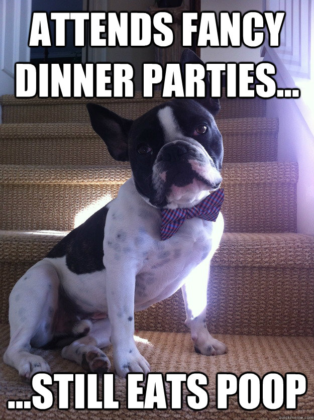 Attends Fancy Dinner Parties... ...Still Eats Poop