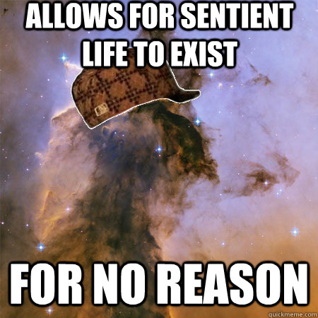 Allows for sentient life to exist FOR NO REASON