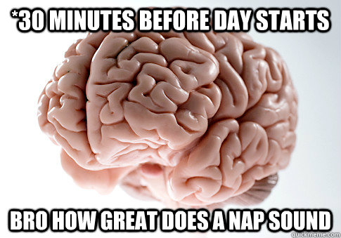 *30 minutes before day starts Bro how great does a nap sound - *30 minutes before day starts Bro how great does a nap sound  Scumbag Brain