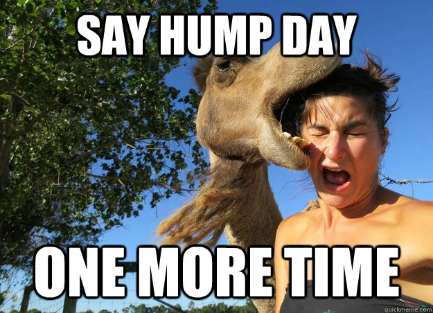 Say Hump Day One More Time