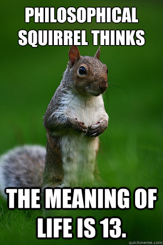 Philosophical Squirrel Thinks The Meaning of Life is 13. - Philosophical Squirrel Thinks The Meaning of Life is 13.  Philosophical Squirrel