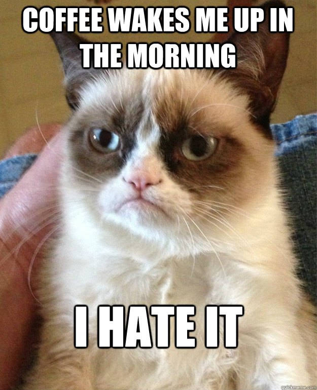 coffee wakes me up in the morning i hate it - coffee wakes me up in the morning i hate it  Grumpy Cat