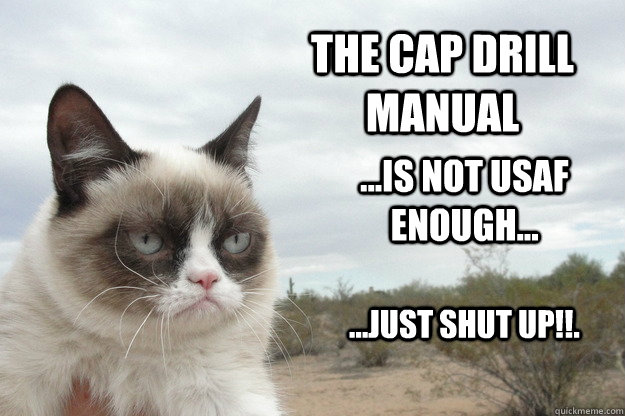 The CAP Drill manual ...is not USAF enough... ...just shut up!!. - The CAP Drill manual ...is not USAF enough... ...just shut up!!.  Grump Cat