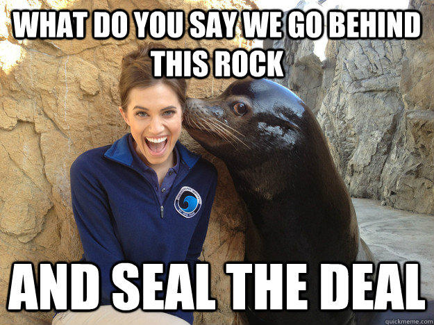What do you say we go behind this rock and seal the deal