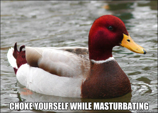 choke yourself while masturbating -  choke yourself while masturbating  Malicious Advice Mallard