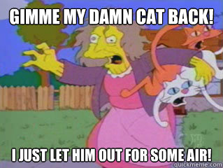 Gimme my damn cat back! i just let him out for some air!