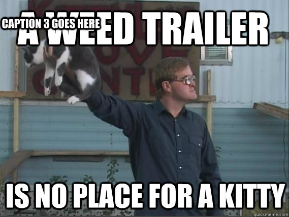 A weed trailer is no place for a kitty Caption 3 goes here