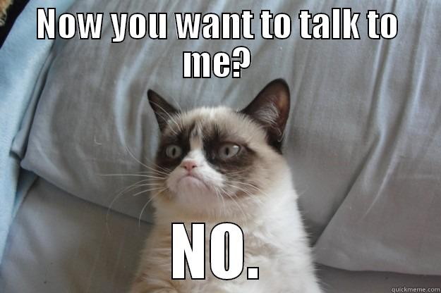 NOW YOU WANT TO TALK TO ME? NO. Grumpy Cat