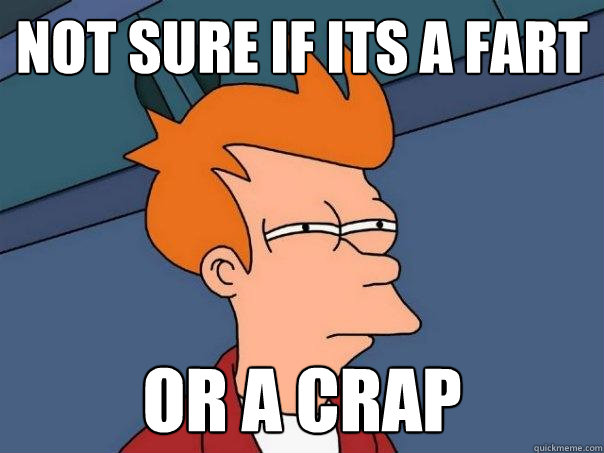 not sure if ITS A fart or a crap - not sure if ITS A fart or a crap  Futurama Fry