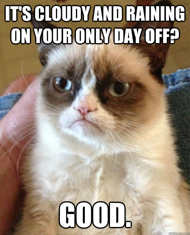 It's cloudy and raining on your only day off? Good.  - It's cloudy and raining on your only day off? Good.   Grump Cat