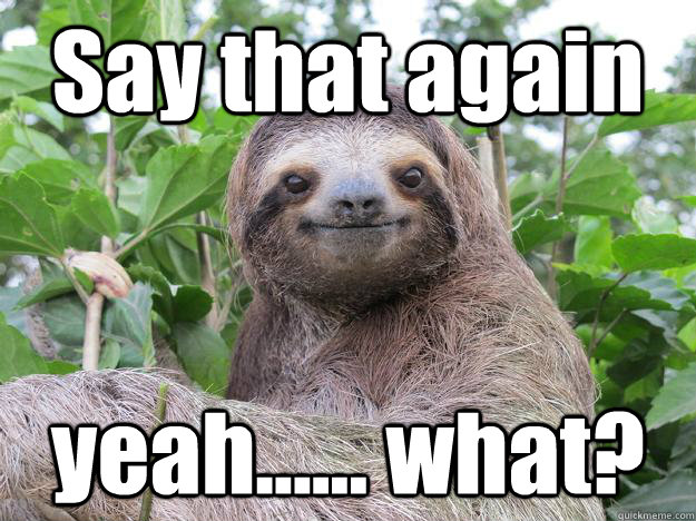 Say that again yeah...... what?  Stoned Sloth