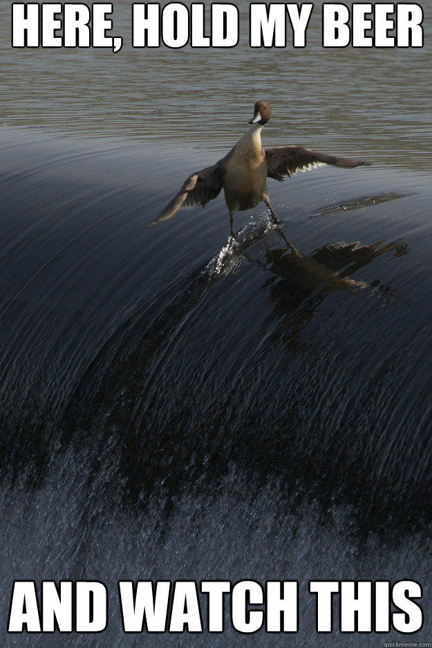 here hold my beer and watch this gnarly duck quickmeme