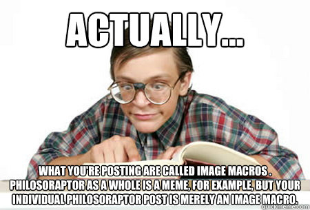 ACTUALLY... What you're posting are called image macros . Philosoraptor as a whole is a meme, for example, but your individual Philosoraptor post is merely an image macro.  Pedantic Nerd