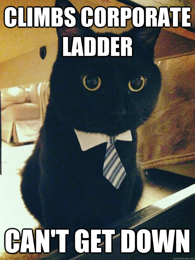 ccd84231eb0aa99d1dbcd73e51e18de6ca6e37a280f4fd3823ca800236e0d551 climbs corporate ladder can't get down corporate cat quickmeme,Get Down Business Meme