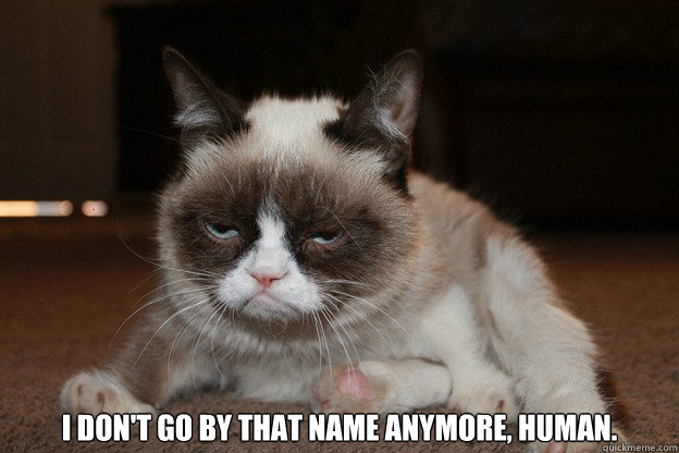 I don't go by that name anymore, human.  grumpy cat monday