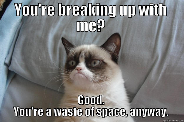 YOU'RE BREAKING UP WITH ME? GOOD. YOU'RE A WASTE OF SPACE, ANYWAY. Grumpy Cat