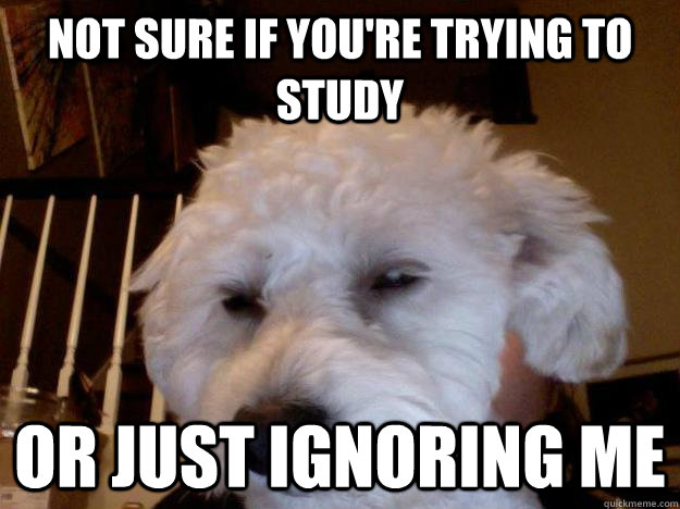 Not sure if you're trying to study Or just ignoring me