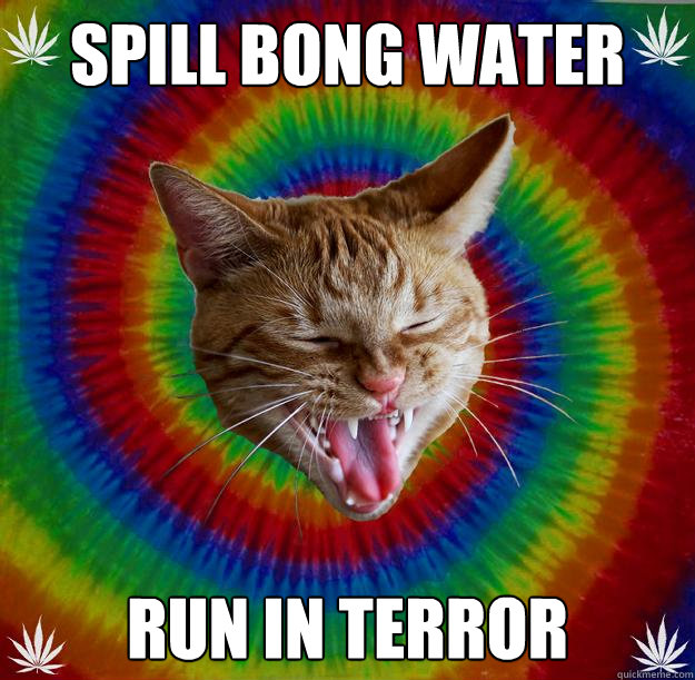 Spill Bong Water run in Terror