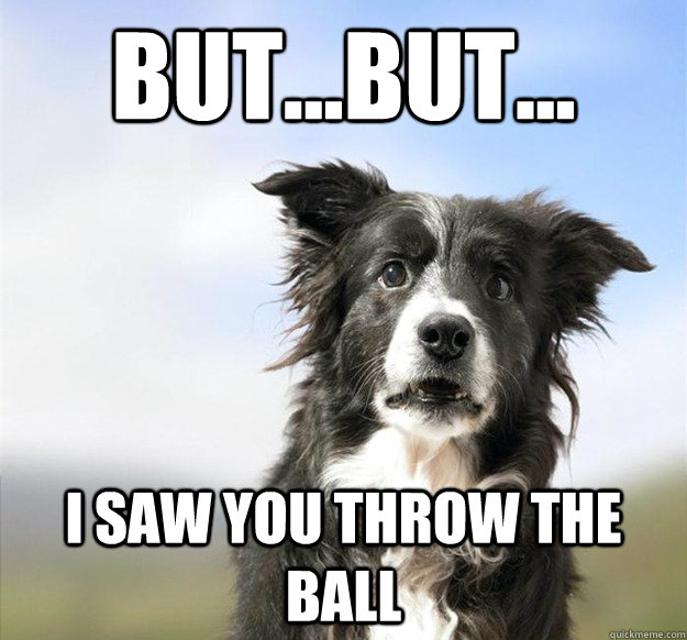 But...but... I saw you throw the ball - But...but... I saw you throw the ball  Misc