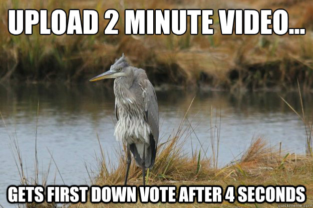 upload 2 minute video... gets first down vote after 4 seconds
