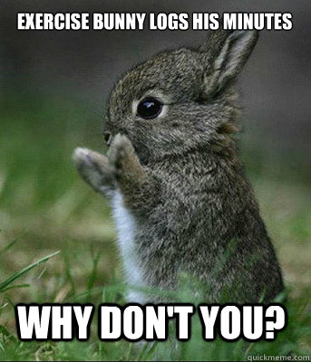 why don't you? exercise bunny logs his minutes