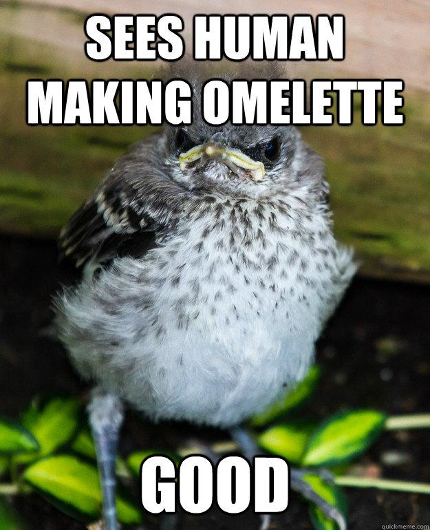 Sees human making omelette Good