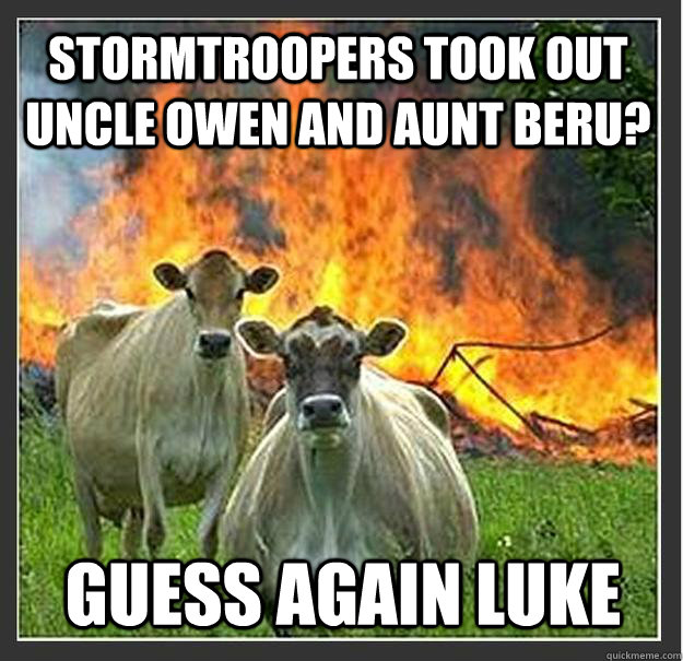 Stormtroopers took out Uncle Owen and Aunt Beru? Guess again Luke - Stormtroopers took out Uncle Owen and Aunt Beru? Guess again Luke  Evil cows