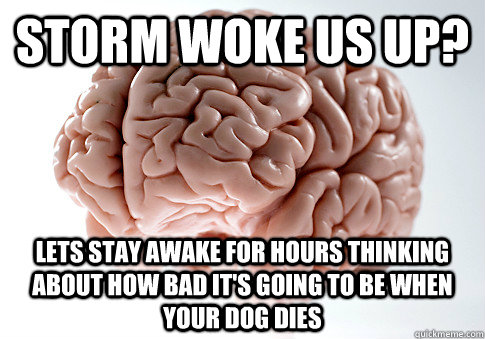 StOrm woke us up? Lets stay awake for hours thinking about how bad it's going to be when your dog dies - StOrm woke us up? Lets stay awake for hours thinking about how bad it's going to be when your dog dies  Scumbag Brain