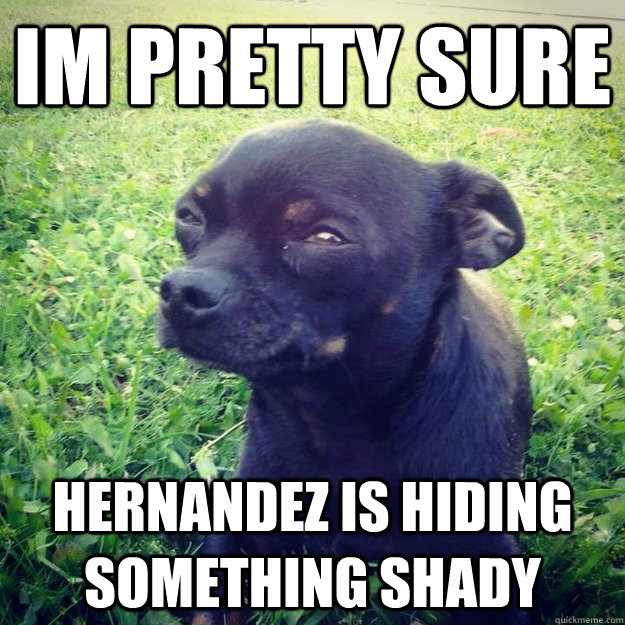 IM PRETTY SURE Hernandez is hiding something shady - IM PRETTY SURE Hernandez is hiding something shady  Skeptical Dog