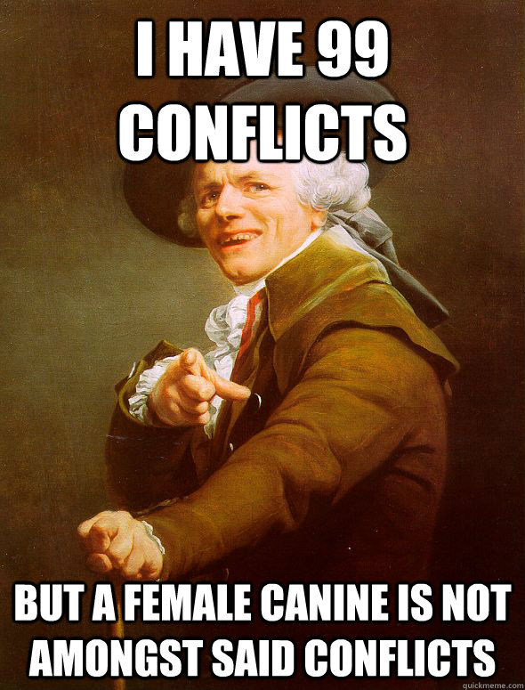 I have 99 conflicts  but a female canine is not amongst said conflicts - I have 99 conflicts  but a female canine is not amongst said conflicts  Joseph Ducreux