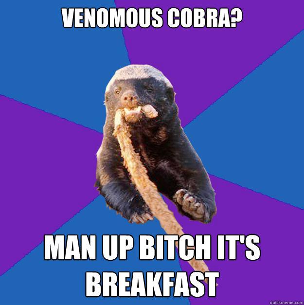 venomous cobra? man up bitch it's breakfast