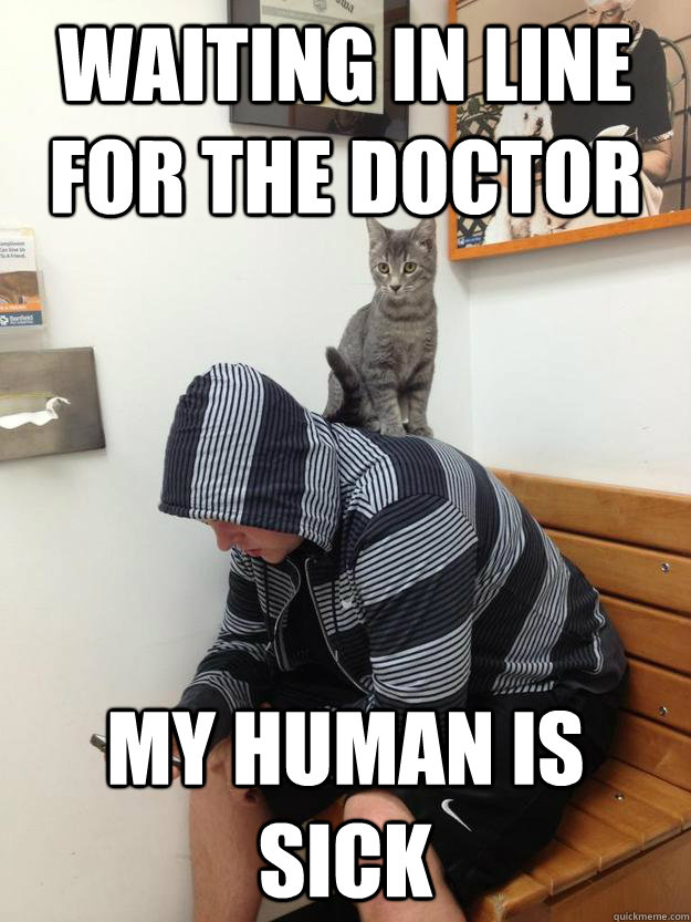 Waiting in line for the doctor My Human is sick - Waiting in line for the doctor My Human is sick  Misc