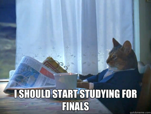 I should start studying for finals -  I should start studying for finals  The One Percent Cat