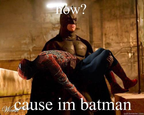 how? cause im batman - how? cause im batman  Batman is King