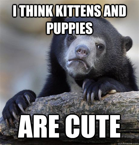 I think kittens and puppies are cute - I think kittens and puppies are cute  Confession Bear