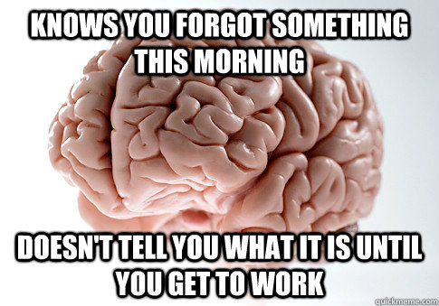 Knows you forgot something this morning Doesn't tell you what it is until you get to work - Knows you forgot something this morning Doesn't tell you what it is until you get to work  Scumbag Brain