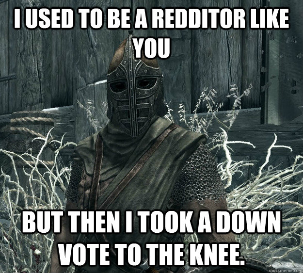 I used to be a redditor like you but then I took a down vote to the knee. - I used to be a redditor like you but then I took a down vote to the knee.  Skyrim Guard