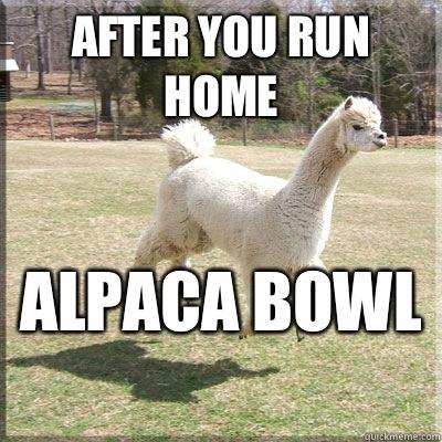 After you run home  Alpaca bowl