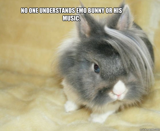 No one understands Emo Bunny or his music. - No one understands Emo Bunny or his music.  Emo Bunny